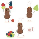 Cute ant. Ant isolated on white background Royalty Free Stock Photos