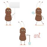 Cute ant. Ant isolated on white background Royalty Free Stock Images