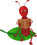 Cute ant reading a book. Illustration of isolated cute ant reading a book on white Royalty Free Stock Photos