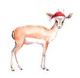 Cute antelope in red santa`s hat. Watercolor christmas animal Stock Photo