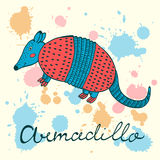 Cute armadillo Stock Photo