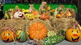 Cute arrangement of painted pumpkins Stock Image