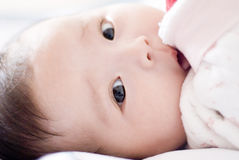 Cute asia baby. Looking at you Royalty Free Stock Photo