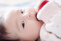 Cute asia baby. With fat face Royalty Free Stock Images