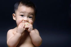 Cute asian baby boy is eating cake with both his hand Royalty Free Stock Photo