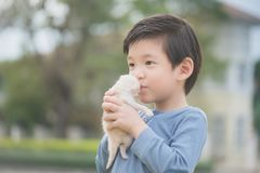 Cute Asian boy  holding a kitten. Cute Asian boy  holding a newborn kitten with sunshine in the park Royalty Free Stock Images