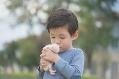 Cute Asian boy holding a kitten. Cute Asian boy holding a newborn kitten with sunshine in the park Stock Image