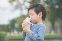 Cute Asian boy  holding a kitten. Cute Asian boy  holding a newborn kitten with sunshine in the park Royalty Free Stock Photo