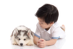 Cute asian boy and siberian husky puppy lying. On white background isolated Stock Images