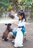 Cute asian child girl feed and play with real rabbit. Cute asian little child girl having fun to feed and play with real rabbit in the farm Stock Photo