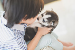 Cute asian child playing with siberian husky puppy Stock Photo