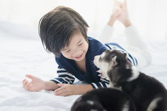 Cute asian child playing with siberian husky puppy. On white bed Stock Image