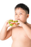Cute asian fat boy eating sandwich isolated. On white Royalty Free Stock Image