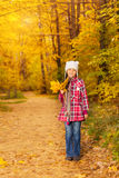 Cute Asian girl with bunch of yellow leaves alone Royalty Free Stock Photo