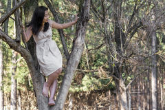 Cute asian girl on a tree Royalty Free Stock Image