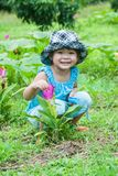 Cute asian girl with Siam tulips blooming in the garden. Royalty Free Stock Photography