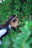 Cute Asian little beautiful girl smell flower Stock Photo