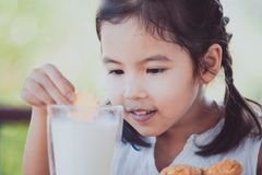 Cute asian little child girl eating cookie with milk. For breakfast with happiness Stock Image