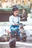 Cute asian little child girl feeding rabbit Royalty Free Stock Photography