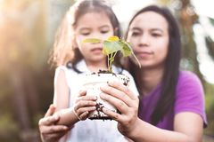 Cute asian little child girl and parent holding young tree. In pot together for prepare plant on ground as save world concept in vintage color tone Royalty Free Stock Images