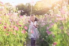 Cute asian little child girl playing with wind turbine. And running in the cosmos flower  field in the summer time Stock Photography