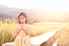 Cute asian little child girl praying with folded her hand royalty free stock photos