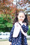 Cute Asian little beautiful girl autumn in the park. Cute Asian little girl beautiful  playing in a park,sunny blooming forest Stock Images