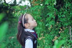 Cute Asian little beautiful girl smell. Cute Asian little girl beautiful  playing in a park,sunny blooming forest Royalty Free Stock Photos
