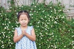 Cute asian little girl closed her eyes and  folded her hand Royalty Free Stock Images