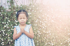 Cute asian little girl closed her eyes and  folded her hand Stock Photography