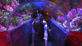 Cute Asian Thai girl is crawling under little glass tunnel underwater of an aquarium with tropical coral reef and marine fish stock footage