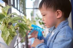 Free Cute Asian Toddler Boy Child Having Fun Using Spray Bottle Watering Golden Pothos Devil's Ivy, Taro Vine At Home Royalty Free Stock Photography - 168304957
