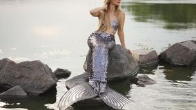 Cute attractive mermaid with blond hair and a long silver scaly tail on a stone in the middle of a lake and water. Straightens her hair, touches her neck stock footage