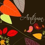 Cute autumn bird illustration Royalty Free Stock Photos