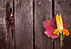 Cute autumn bouquet Royalty Free Stock Photography
