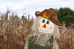 Cute Autumn Scarecrow Stock Images
