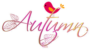 Cute autumn text illustration Royalty Free Stock Image