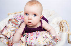 Cute babe looks surprised Stock Photography