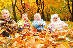 Cute babies Royalty Free Stock Photos