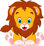 Cute babies lion Stock Photography
