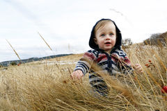 Cute baby. Boy wearing striped sweater with hood sitting in field smiling Stock Images