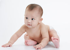 Cute baby Stock Photos
