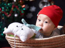 Cute baby. And cat toy in a basket Stock Image