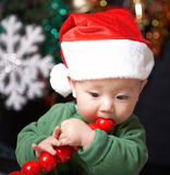 Cute baby. Christmas baby eating red fruits Stock Photography