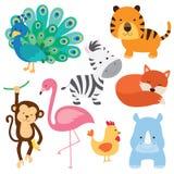 Cute Baby Animal. Vector illustration of cute baby animal including peacock, flamingo, zebra, tiger, fox, monkey, chicken and rhino Stock Photo