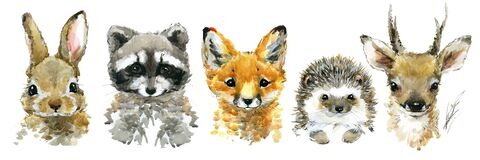 Free Cute Baby Animals Watercolor Set Stock Images - 199560714