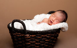 Cute baby asleep in basket. With soft lining stock photo