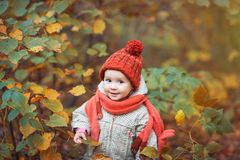 Cute baby in autumn clothes. child in knitted hats and scarf royalty free stock photos
