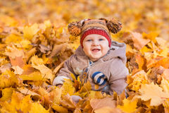 Cute baby in autumn leaves. Stock Photography