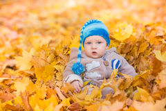 Cute baby in autumn leaves. Royalty Free Stock Photo